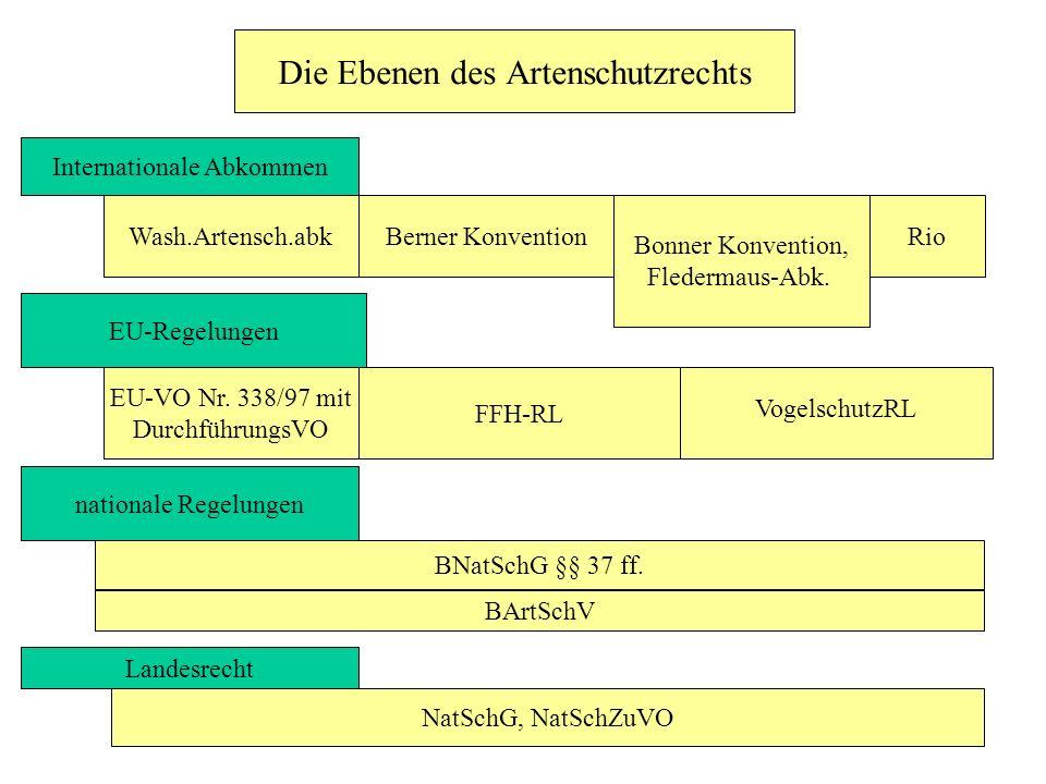 Die Ebenen des Artenschutzrechts Internationale Abkommen Wash.Artensch.abkBerner Konvention Bonner Konvention, Fledermaus-Abk. EU-Regelungen EU-VO Nr.