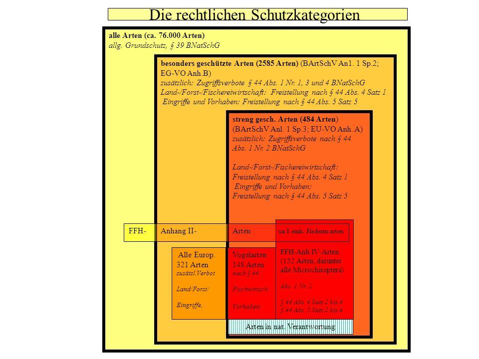 alle Arten (ca. 76.000 Arten) allg. Grundschutz, § 39 BNatSchG besonders geschützte Arten (2585 Arten) (BArtSchV An1. 1 Sp.2; EG-VO Anh.B) zusätzlich: