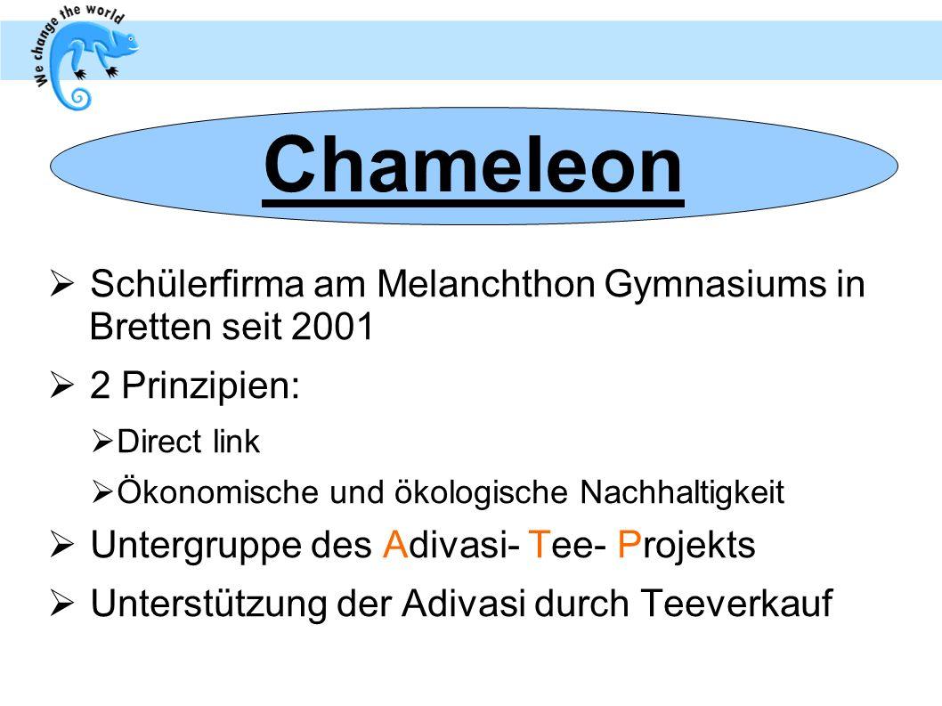Schülerfirma am Melanchthon Gymnasiums in Bretten seit 2001 2 Prinzipien: Direct link Ökonomische und ökologische Nachhaltigkeit Untergruppe des Adiva