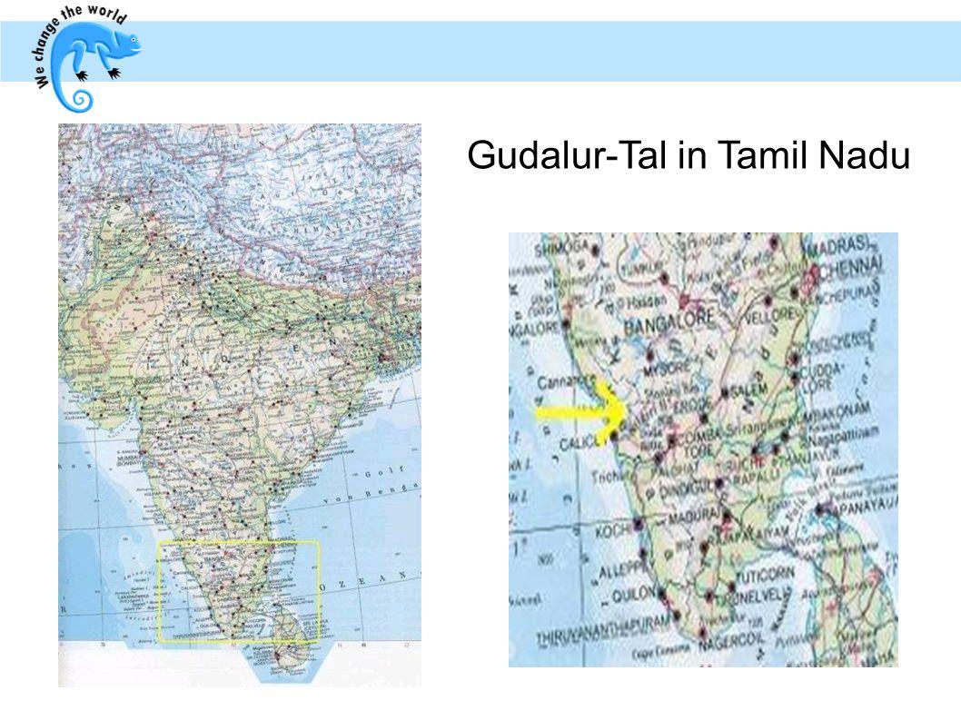 Gudalur-Tal in Tamil Nadu