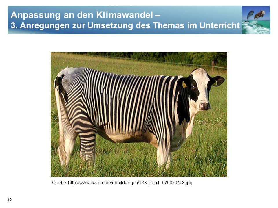 12 Anpassung an den Klimawandel – 3. Anregungen zur Umsetzung des Themas im Unterricht Quelle: http://www.ikzm-d.de/abbildungen/138_kuh4_0700x0498.jpg