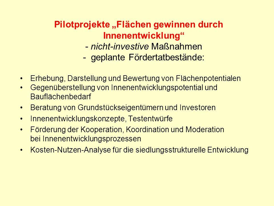Pilotprojekte Flächen gewinnen durch Innenentwicklung - nicht-investive Maßnahmen - geplante Fördertatbestände: Erhebung, Darstellung und Bewertung vo