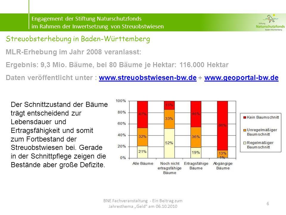 Modellvorhaben zur Inwertsetzung von Streuobstwiesen 17 BNE Fachveranstaltung - Ein Beitrag zum Jahresthema Geld am 06.10.2010