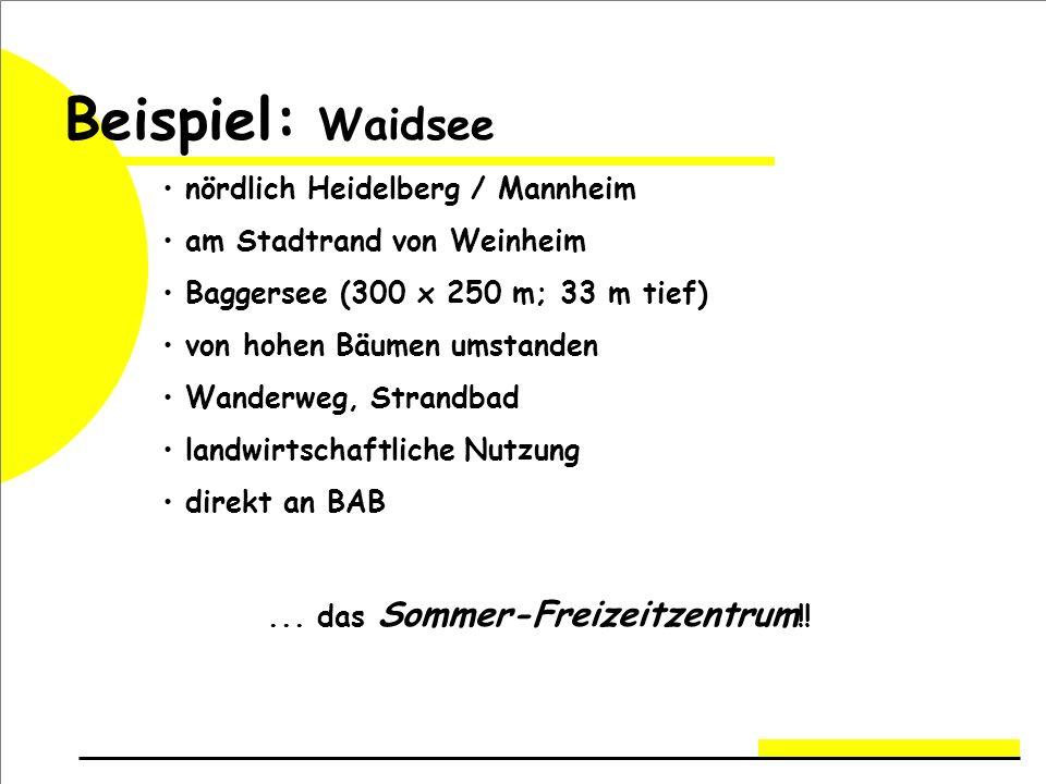 Beispiel: Waidsee nördlich Heidelberg / Mannheim am Stadtrand von Weinheim Baggersee (300 x 250 m; 33 m tief) von hohen Bäumen umstanden Wanderweg, Strandbad landwirtschaftliche Nutzung direkt an BAB...