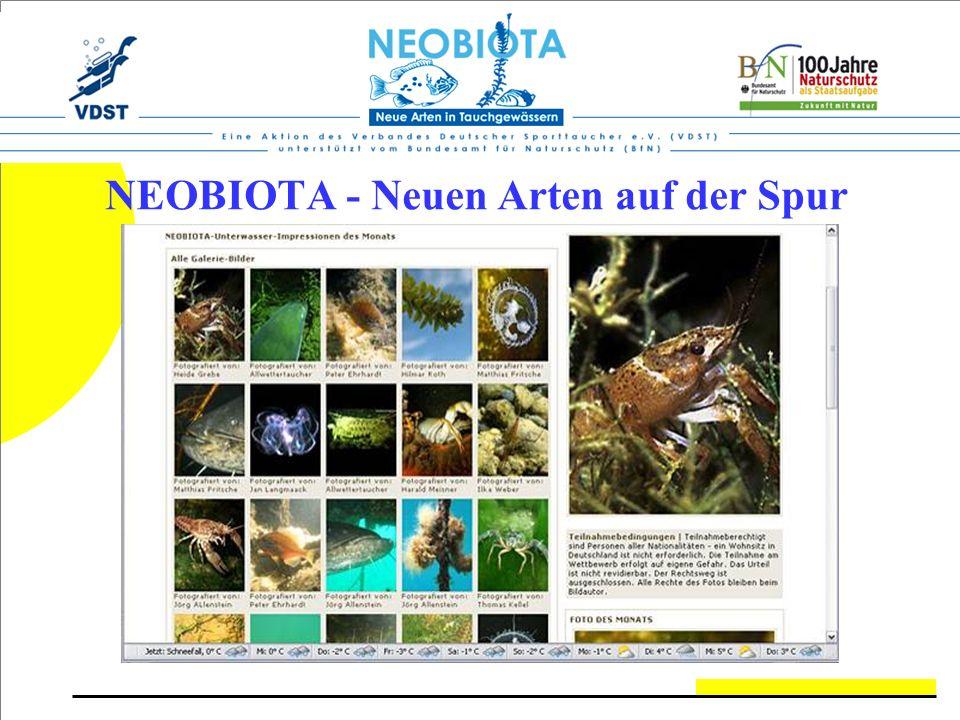 NEOBIOTA - Neuen Arten auf der Spur