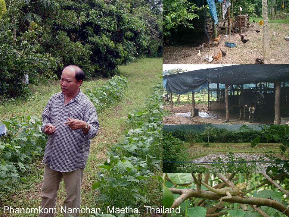 Phanomkorn Namchan, Maetha, Thailand