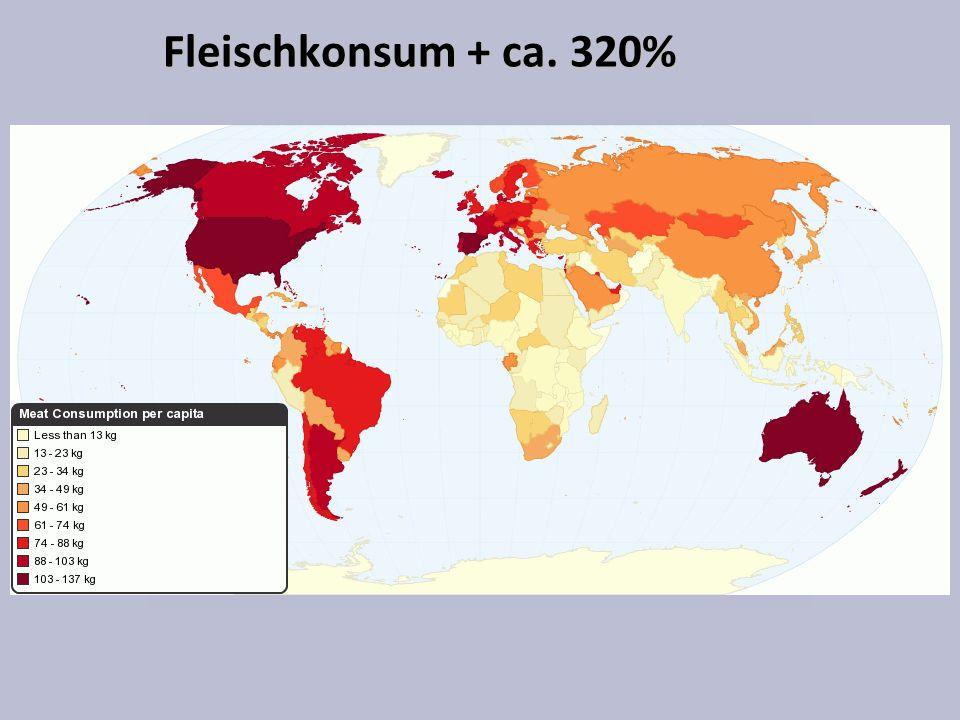 Fleischkonsum + ca. 320%