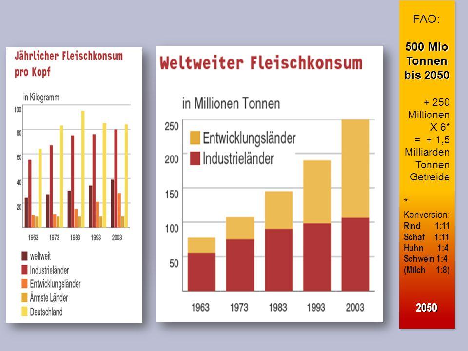 FAO: 500 Mio Tonnen bis 2050 + 250 Millionen X 6* = + 1,5 Milliarden Tonnen Getreide * Konversion: Rind 1:11 Schaf 1:11 Huhn 1:4 Schwein 1:4 (Milch 1:8)2050 FAO: 500 Mio Tonnen bis 2050 + 250 Millionen X 6* = + 1,5 Milliarden Tonnen Getreide * Konversion: Rind 1:11 Schaf 1:11 Huhn 1:4 Schwein 1:4 (Milch 1:8)2050