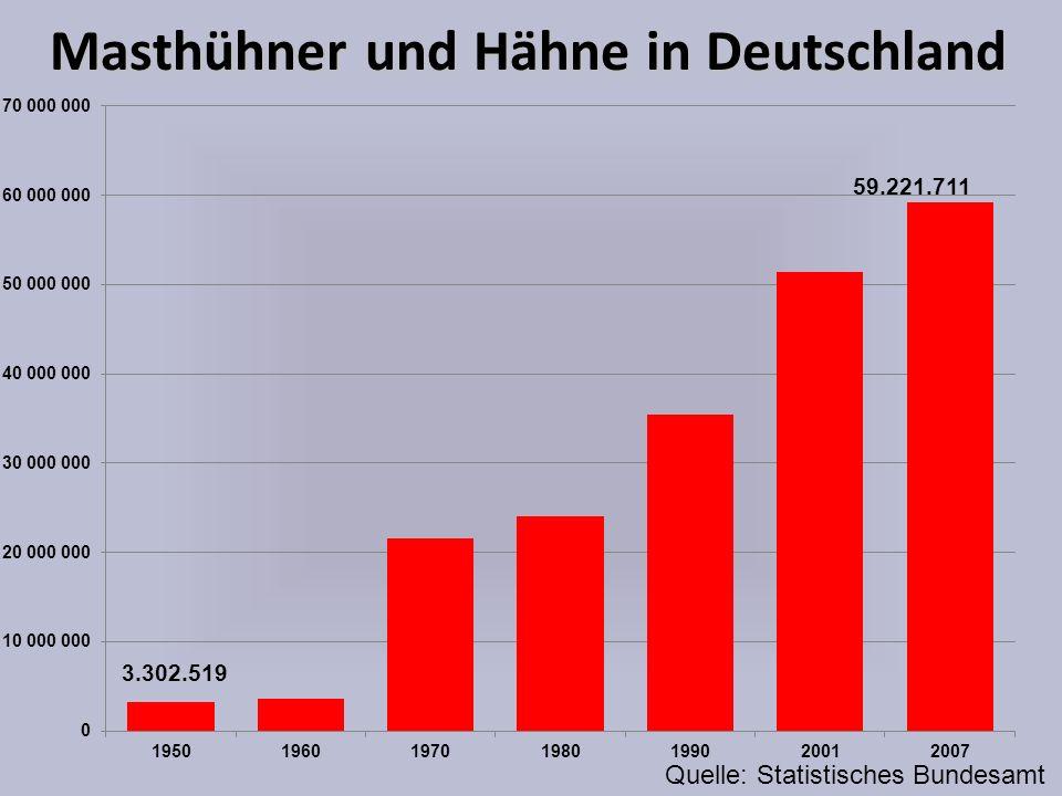 Masthühner und Hähne in Deutschland Quelle: Statistisches Bundesamt