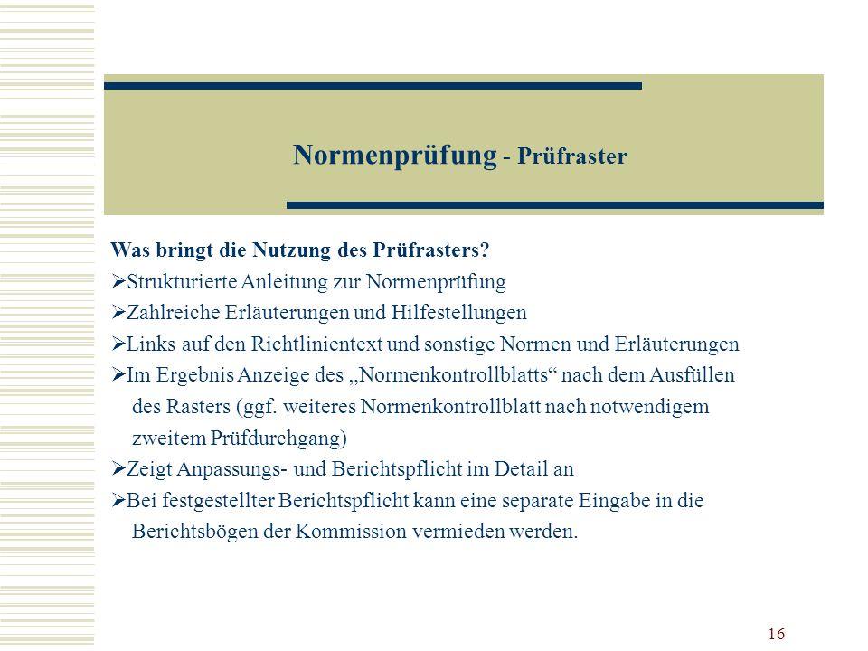 16 Normenprüfung - Prüfraster Was bringt die Nutzung des Prüfrasters? Strukturierte Anleitung zur Normenprüfung Zahlreiche Erläuterungen und Hilfestel