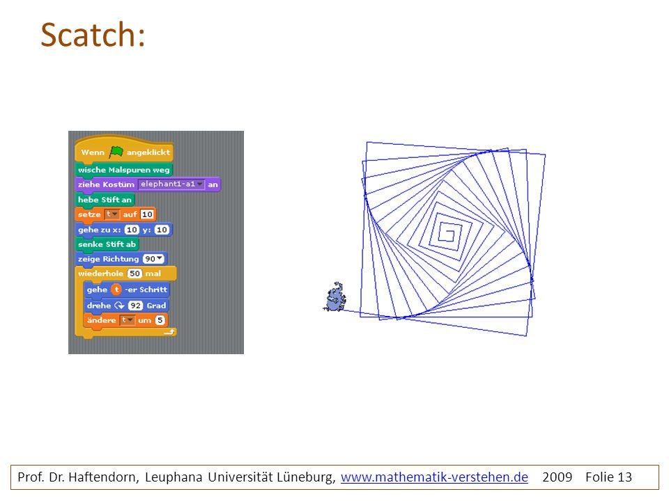 Scatch: Prof. Dr. Haftendorn, Leuphana Universität Lüneburg, www.mathematik-verstehen.de 2009 Folie 13www.mathematik-verstehen.de