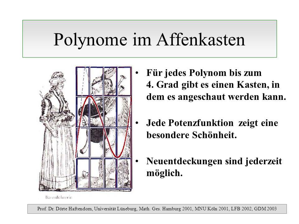 Polynome im Affenkasten Für jedes Polynom bis zum 4. Grad gibt es einen Kasten, in dem es angeschaut werden kann. Jede Potenzfunktion zeigt eine beson
