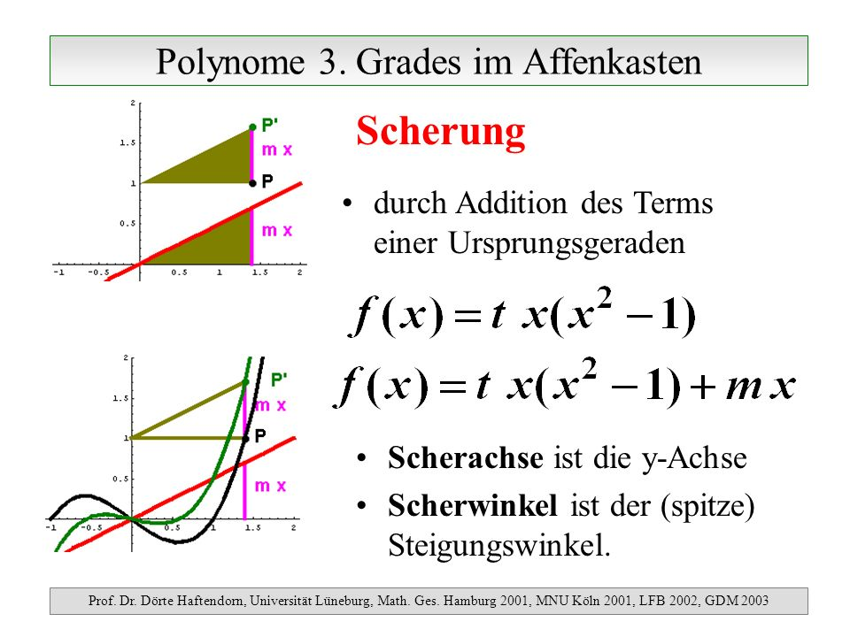 Polynome 3. Grades im Affenkasten Prof. Dr. Dörte Haftendorn, Universität Lüneburg, Math. Ges. Hamburg 2001, MNU Köln 2001, LFB 2002, GDM 2003 Scherun