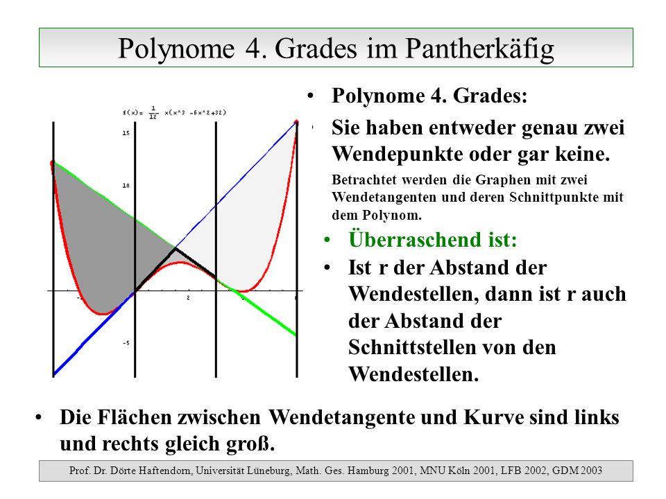 Polynome 4. Grades im Pantherkäfig Prof. Dr. Dörte Haftendorn, Universität Lüneburg, Math. Ges. Hamburg 2001, MNU Köln 2001, LFB 2002, GDM 2003 Polyno