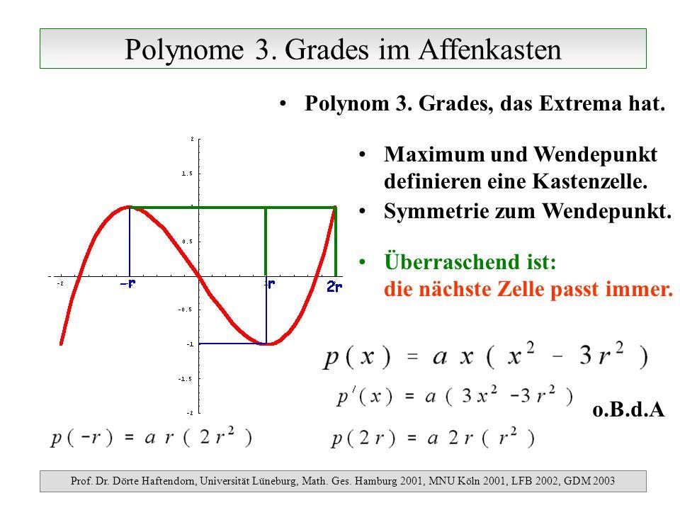 Polynome 3. Grades im Affenkasten Prof. Dr. Dörte Haftendorn, Universität Lüneburg, Math. Ges. Hamburg 2001, MNU Köln 2001, LFB 2002, GDM 2003 Polynom