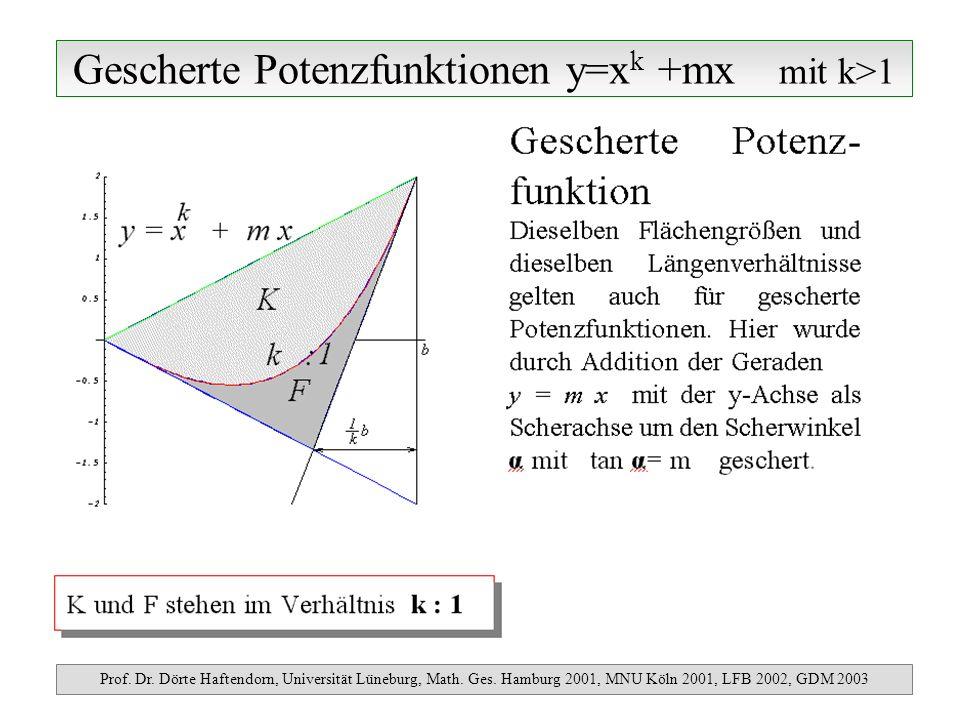 Gescherte Potenzfunktionen y=x k +mx mit k>1 Prof. Dr. Dörte Haftendorn, Universität Lüneburg, Math. Ges. Hamburg 2001, MNU Köln 2001, LFB 2002, GDM 2