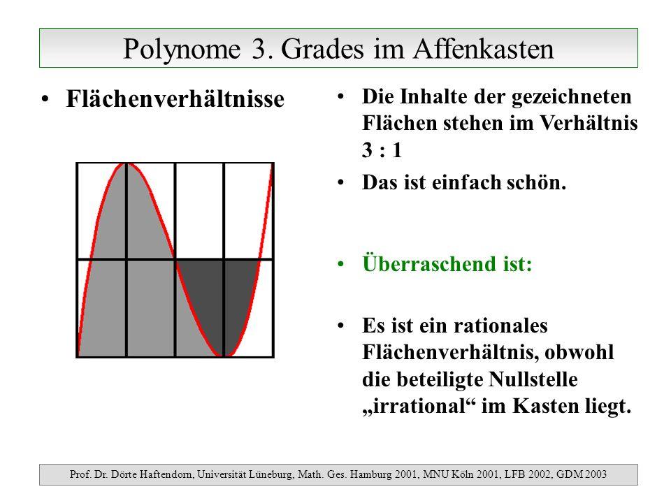 Polynome 3.Grades im Affenkasten Prof. Dr. Dörte Haftendorn, Universität Lüneburg, Math.