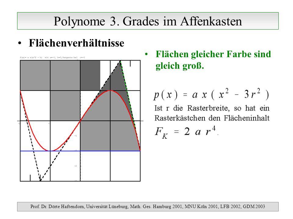 Polynome 4.Grades im Pantherkäfig Prof. Dr. Dörte Haftendorn, Universität Lüneburg, Math.