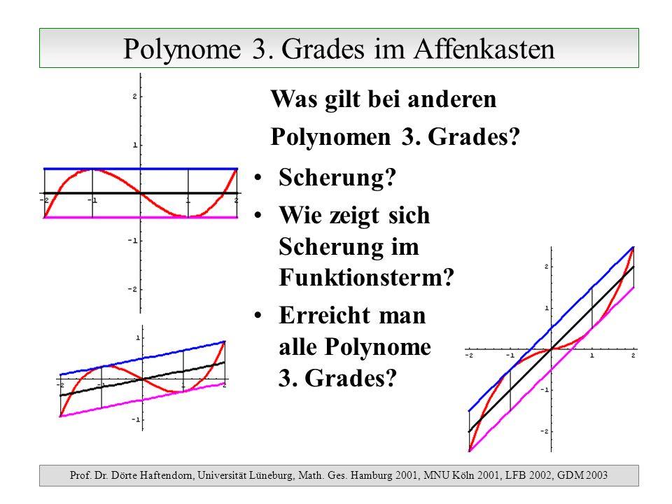 Potenzfunktionen y=x k mit k>1 Prof.Dr. Dörte Haftendorn, Universität Lüneburg, Math.
