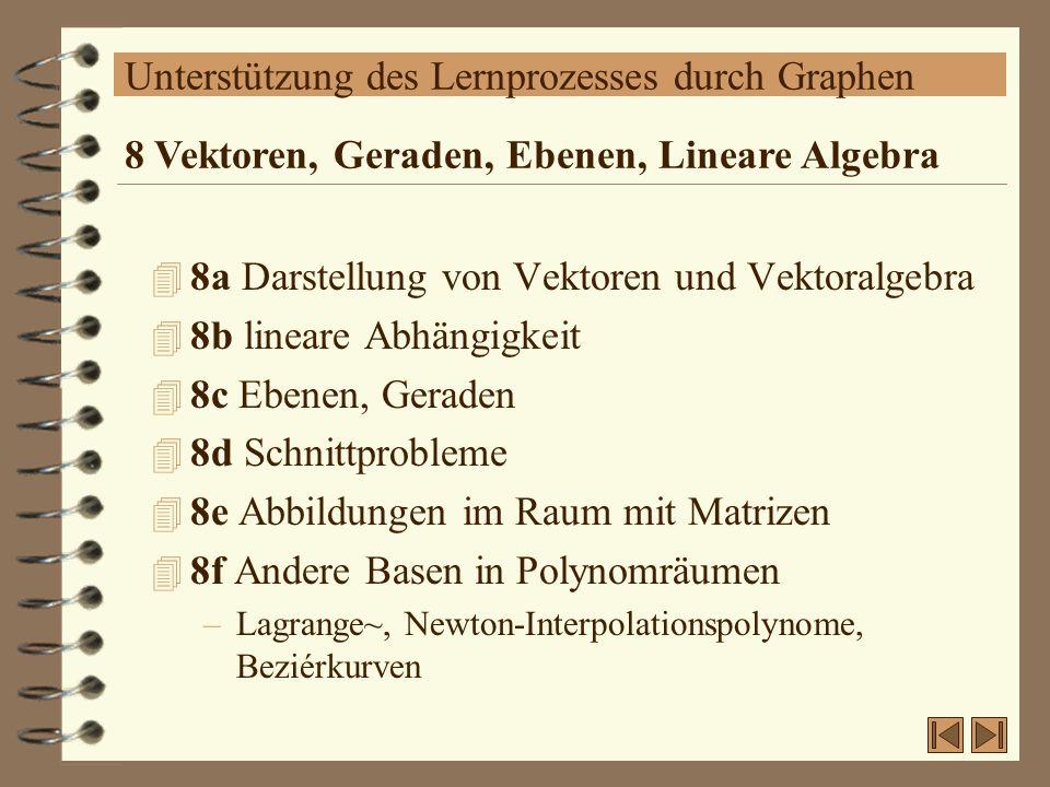 Unterstützung des Lernprozesses durch Graphen 4 8a Darstellung von Vektoren und Vektoralgebra 4 8b lineare Abhängigkeit 4 8c Ebenen, Geraden 4 8d Schn