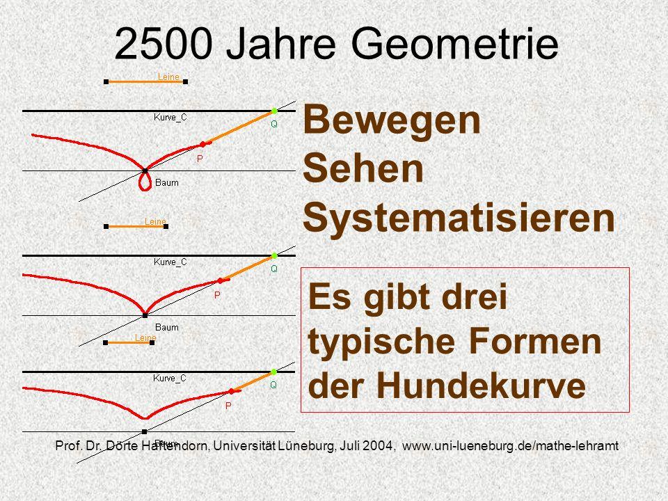 2500 Jahre Geometrie Prof. Dr. Dörte Haftendorn, Universität Lüneburg, Juli 2004, www.uni-lueneburg.de/mathe-lehramt Bewegen Sehen Systematisieren Es
