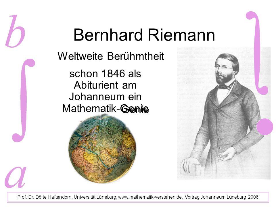 Bernhard Riemann, Gesammelte Werke (neu 1990) Prof.