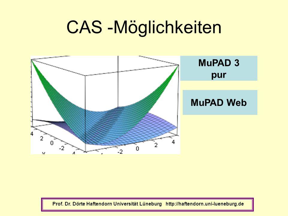 CAS -Möglichkeiten Prof. Dr. Dörte Haftendorn Universität Lüneburg http://haftendorn.uni-lueneburg.de MuPAD Web MuPAD 3 pur