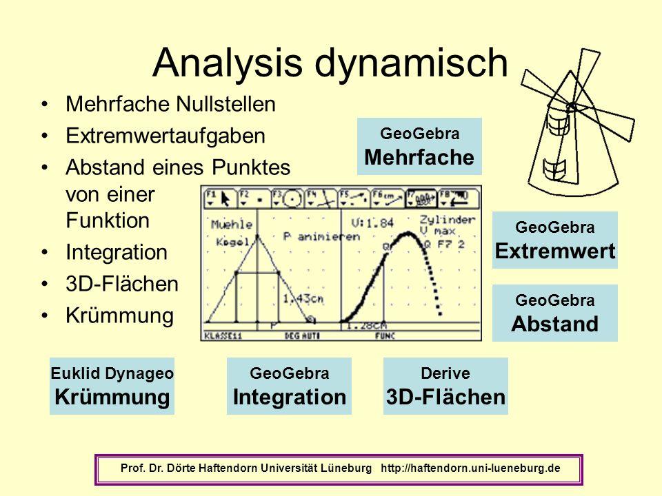 Analysis dynamisch Mehrfache Nullstellen Extremwertaufgaben Abstand eines Punktes von einer Funktion Integration 3D-Flächen Krümmung Prof. Dr. Dörte H