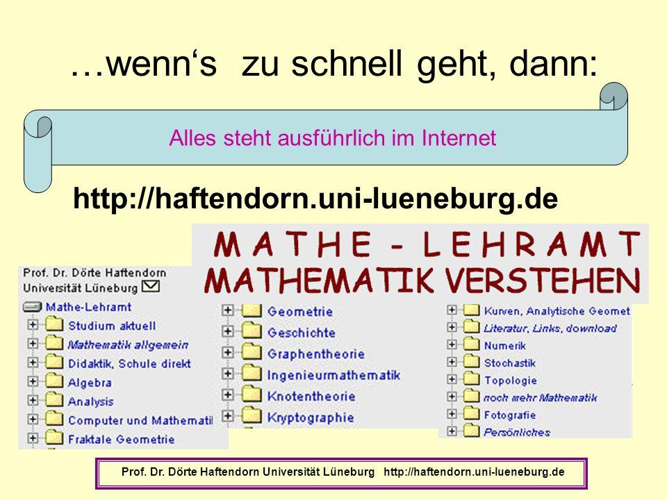 …wenns zu schnell geht, dann: Prof. Dr. Dörte Haftendorn Universität Lüneburg http://haftendorn.uni-lueneburg.de Alles steht ausführlich im Internet h
