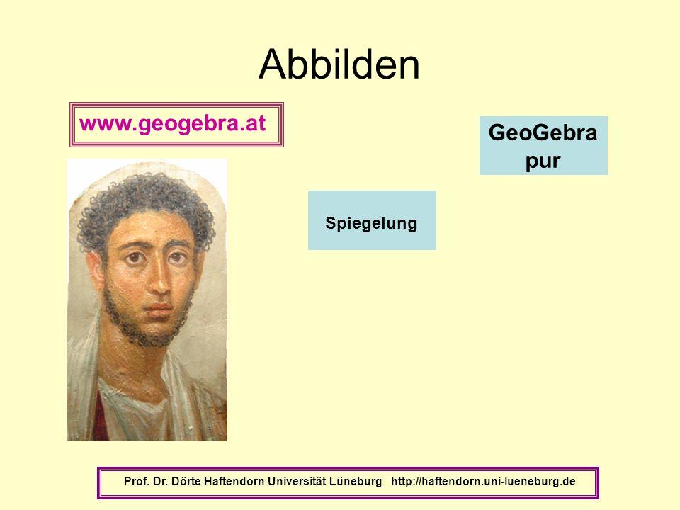 Abbilden Prof. Dr. Dörte Haftendorn Universität Lüneburg http://haftendorn.uni-lueneburg.de GeoGebra pur Spiegelung www.geogebra.at