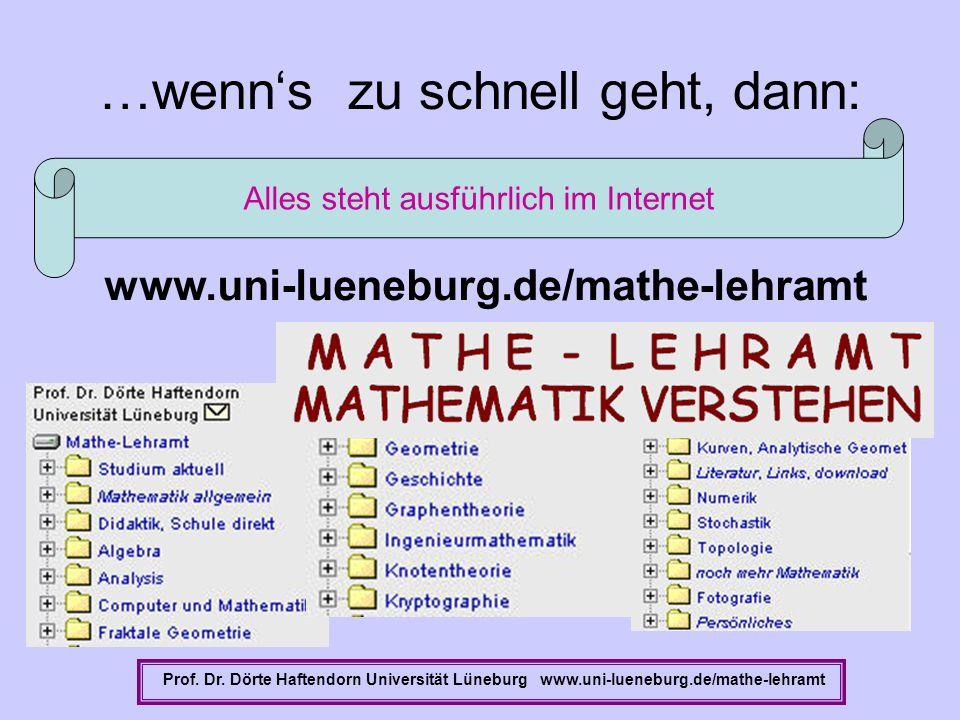 …wenns zu schnell geht, dann: Prof. Dr. Dörte Haftendorn Universität Lüneburg www.uni-lueneburg.de/mathe-lehramt Alles steht ausführlich im Internet w