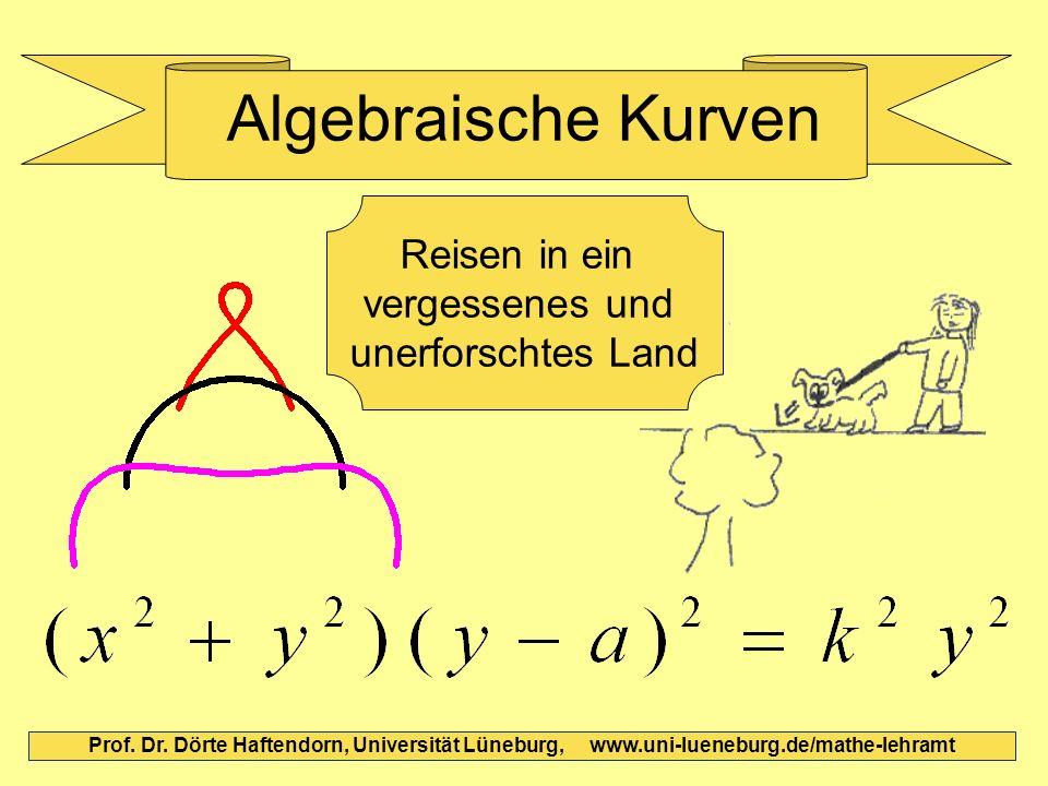 Algebraische Kurven Prof. Dr. Dörte Haftendorn, Universität Lüneburg, www.uni-lueneburg.de/mathe-lehramt Reisen in ein vergessenes und unerforschtes L