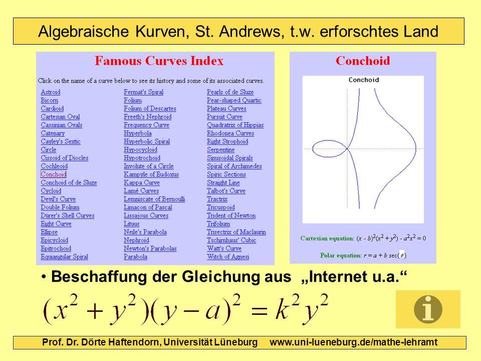 Algebraische Kurven, St. Andrews, t.w. erforschtes Land Prof. Dr. Dörte Haftendorn, Universität Lüneburg www.uni-lueneburg.de/mathe-lehramt Beschaffun