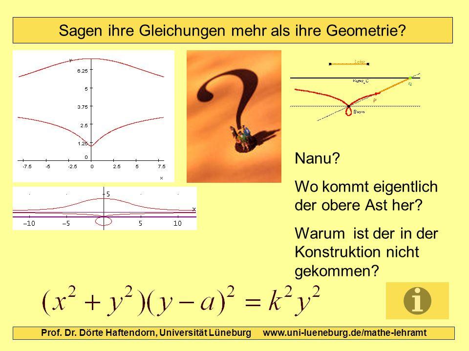 Sagen ihre Gleichungen mehr als ihre Geometrie? Prof. Dr. Dörte Haftendorn, Universität Lüneburg www.uni-lueneburg.de/mathe-lehramt Nanu? Wo kommt eig