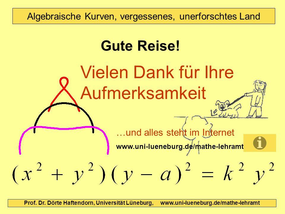 Gute Reise! Prof. Dr. Dörte Haftendorn, Universität Lüneburg, www.uni-lueneburg.de/mathe-lehramt Vielen Dank für Ihre Aufmerksamkeit Algebraische Kurv