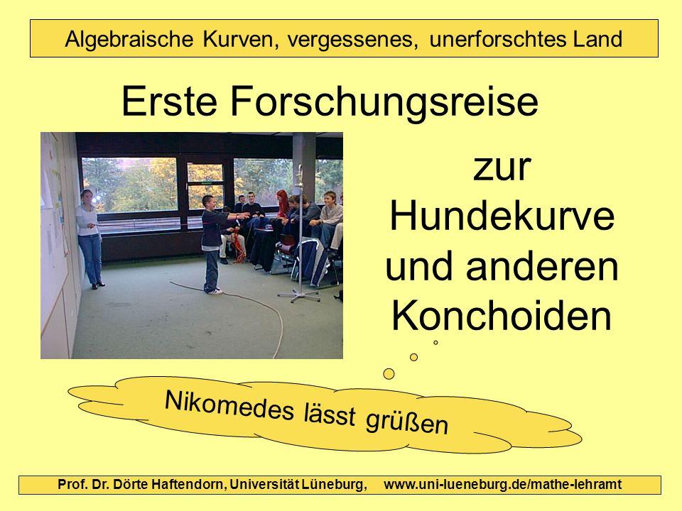 Prof. Dr. Dörte Haftendorn, Universität Lüneburg, www.uni-lueneburg.de/mathe-lehramt Algebraische Kurven, vergessenes, unerforschtes Land Erste Forsch