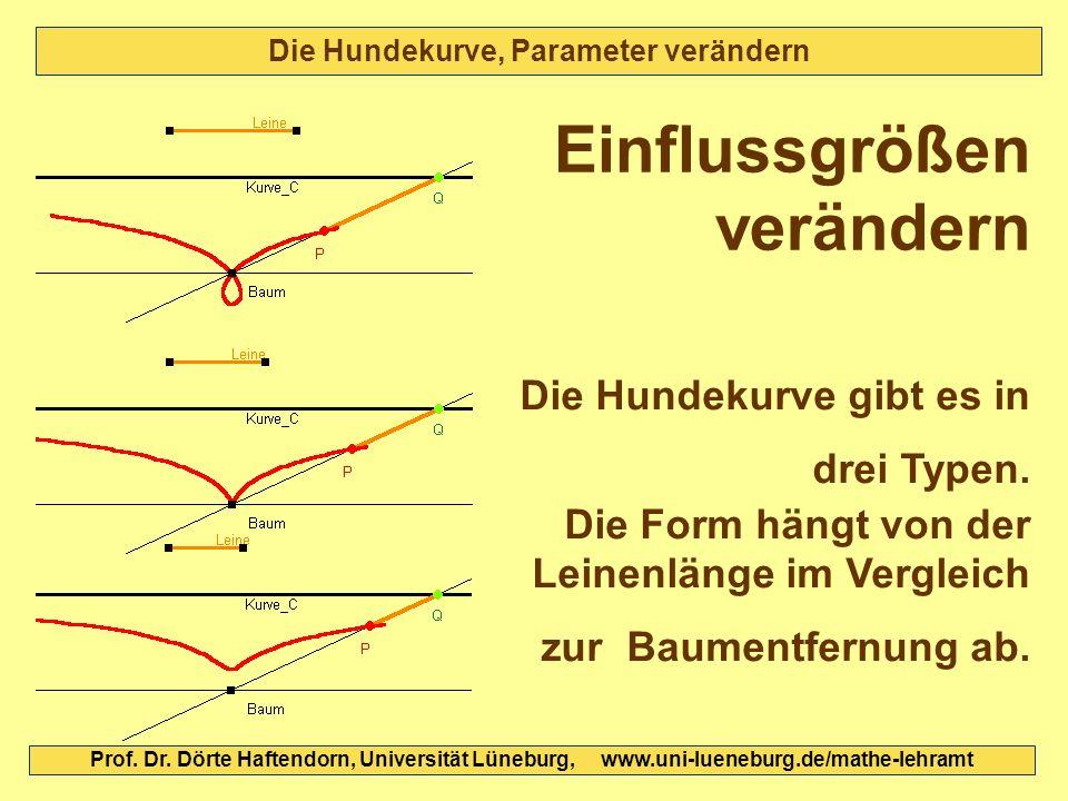 Die Hundekurve, Parameter verändern Die Hundekurve gibt es in drei Typen. Die Form hängt von der Leinenlänge im Vergleich zur Baumentfernung ab. Einfl