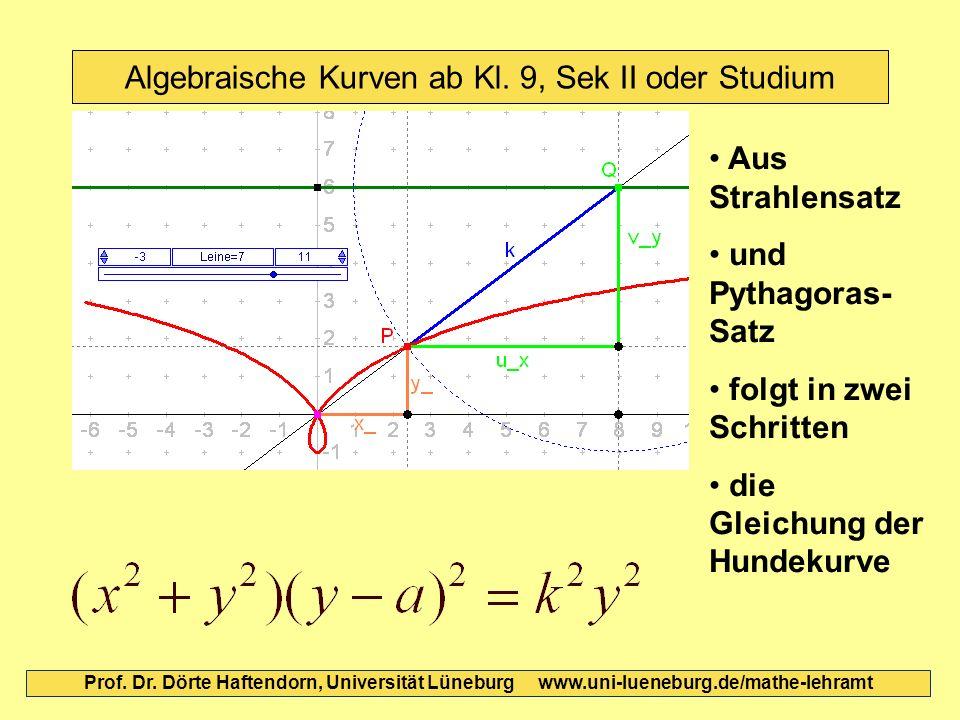 Algebraische Kurven ab Kl. 9, Sek II oder Studium Prof. Dr. Dörte Haftendorn, Universität Lüneburg www.uni-lueneburg.de/mathe-lehramt Aus Strahlensatz