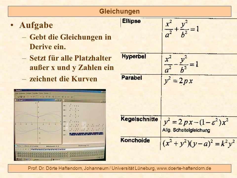 Prof. Dr. Dörte Haftendorn, Johanneum / Universität Lüneburg, www.doerte-haftendorn.de Gleichungen Aufgabe –Gebt die Gleichungen in Derive ein. –Setzt