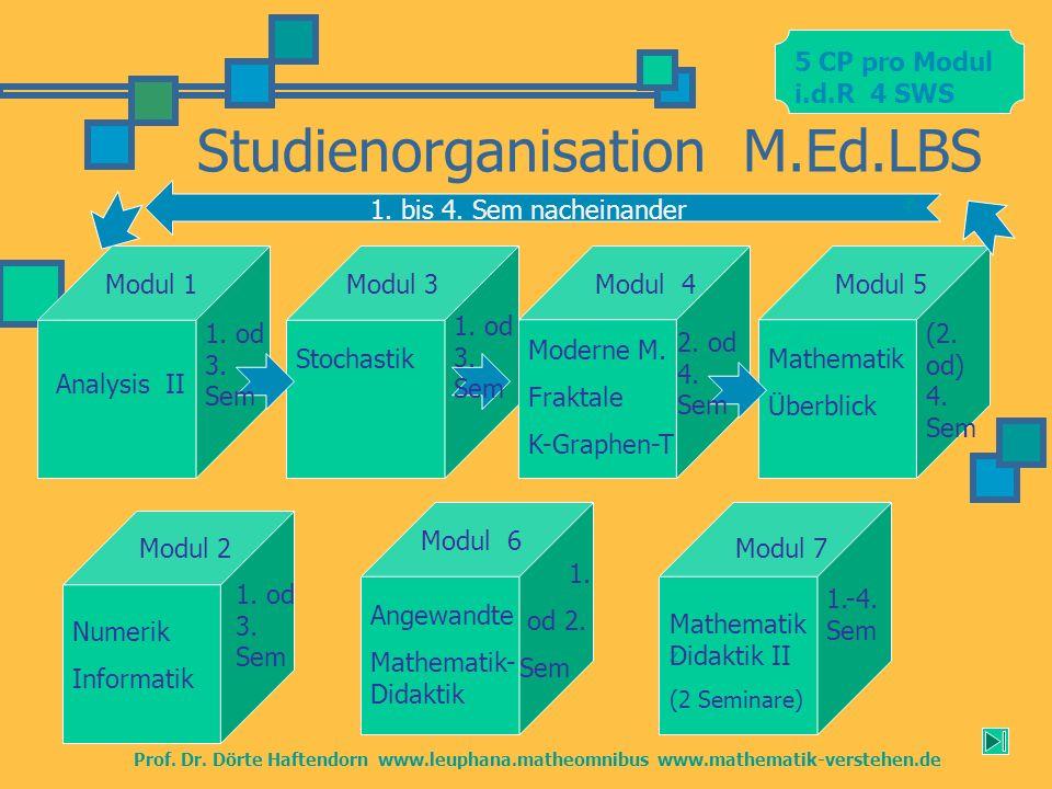 z Studienorganisation M.Ed.LBS Modul 1 Moderne M. Fraktale K-Graphen-T Stochastik Mathematik Didaktik II (2 Seminare) Prof. Dr. Dörte Haftendorn www.l