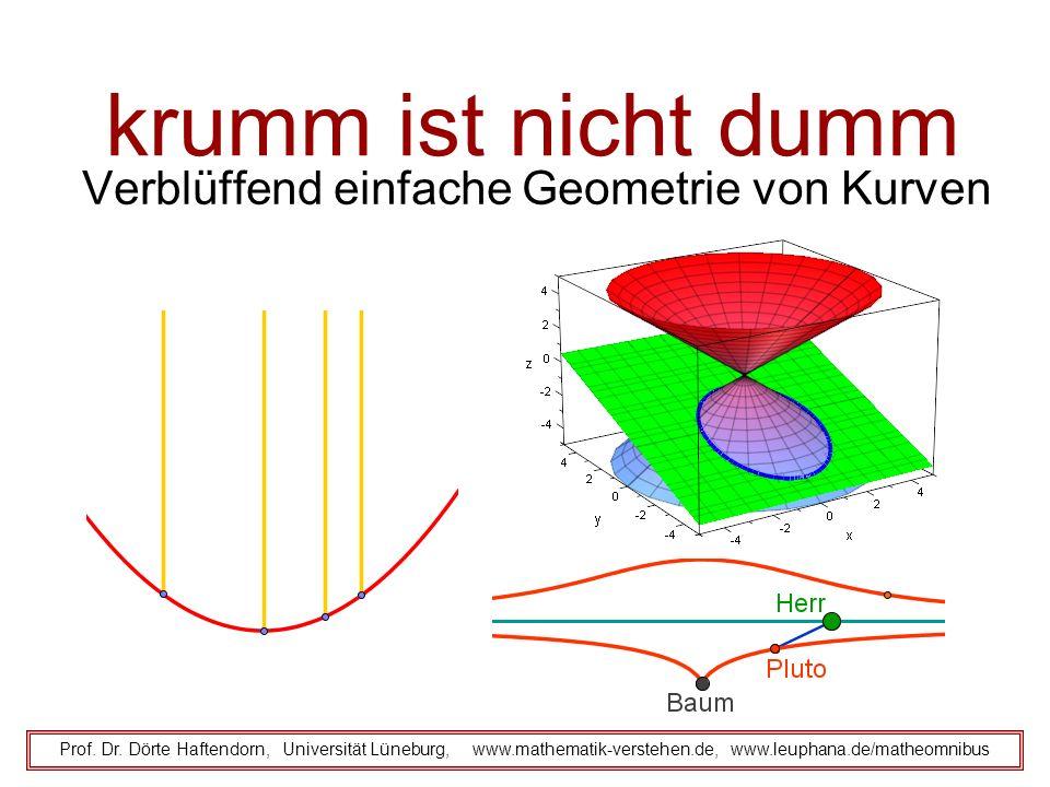 krumm ist nicht dumm Verblüffend einfache Geometrie von Kurven Prof. Dr. Dörte Haftendorn, Universität Lüneburg, www.mathematik-verstehen.de, www.leup