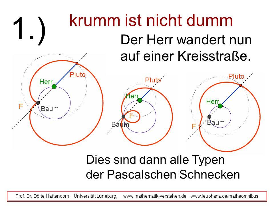 krumm ist nicht dumm Prof. Dr. Dörte Haftendorn, Universität Lüneburg, www.mathematik-verstehen.de, www.leuphana.de/matheomnibus 1.) Der Herr wandert