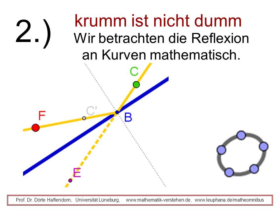 krumm ist nicht dumm Prof. Dr. Dörte Haftendorn, Universität Lüneburg, www.mathematik-verstehen.de, www.leuphana.de/matheomnibus 2.) Wir betrachten di
