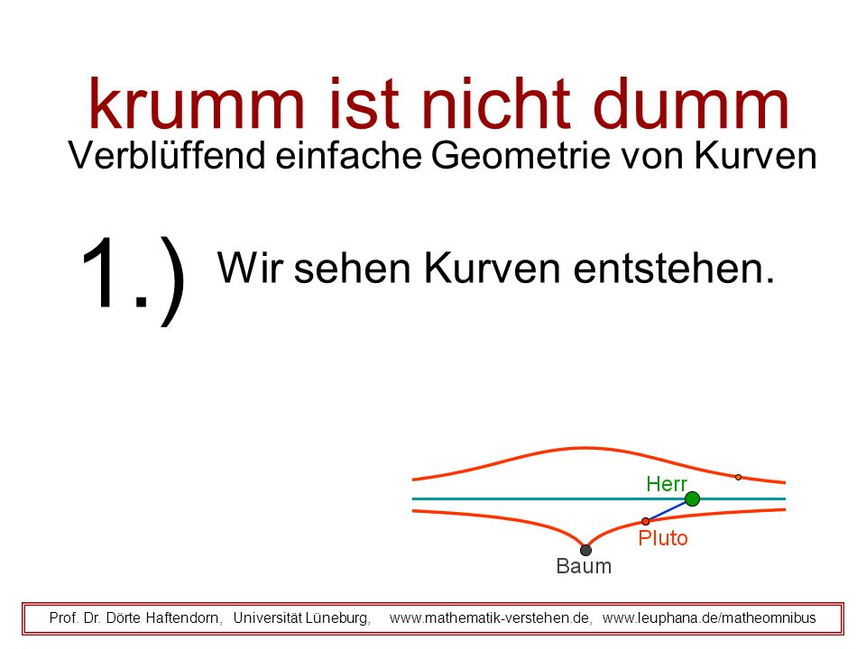 krumm ist nicht dumm Verblüffend einfache Geometrie von Kurven Prof.