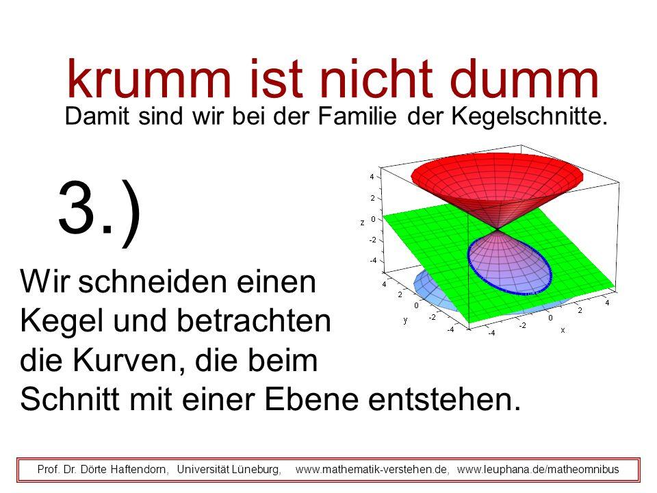 krumm ist nicht dumm Damit sind wir bei der Familie der Kegelschnitte. Prof. Dr. Dörte Haftendorn, Universität Lüneburg, www.mathematik-verstehen.de,