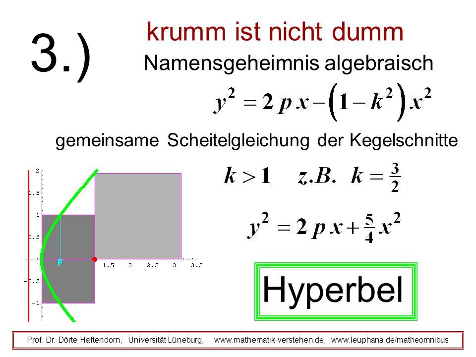 krumm ist nicht dumm Namensgeheimnis algebraisch Prof. Dr. Dörte Haftendorn, Universität Lüneburg, www.mathematik-verstehen.de, www.leuphana.de/matheo