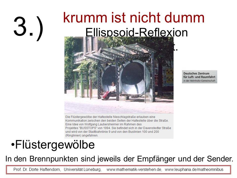 krumm ist nicht dumm Prof. Dr. Dörte Haftendorn, Universität Lüneburg, www.mathematik-verstehen.de, www.leuphana.de/matheomnibus 3.) Ellispsoid-Reflex