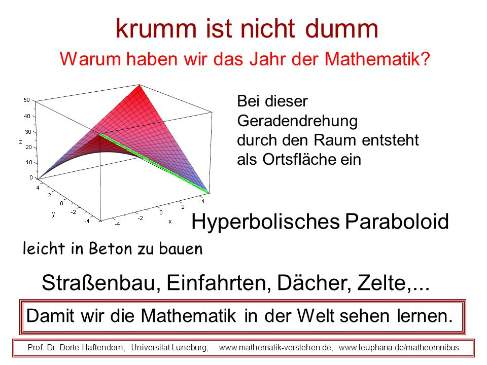 krumm ist nicht dumm Warum haben wir das Jahr der Mathematik? Prof. Dr. Dörte Haftendorn, Universität Lüneburg, www.mathematik-verstehen.de, www.leuph
