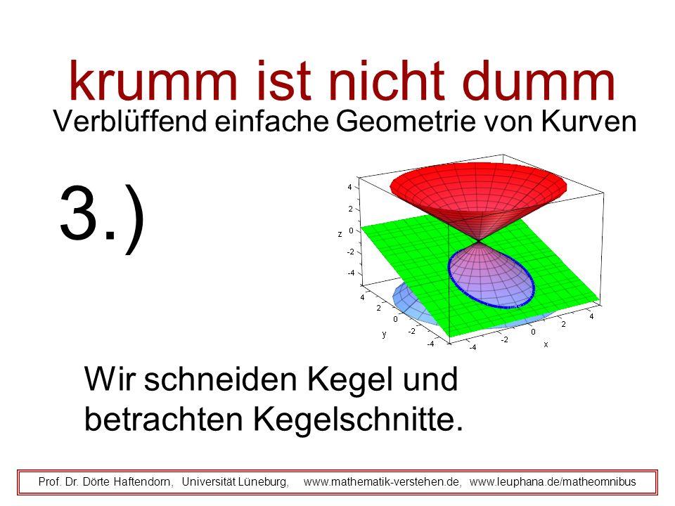 krumm ist nicht dumm Reflexion an der Ellipse Prof.