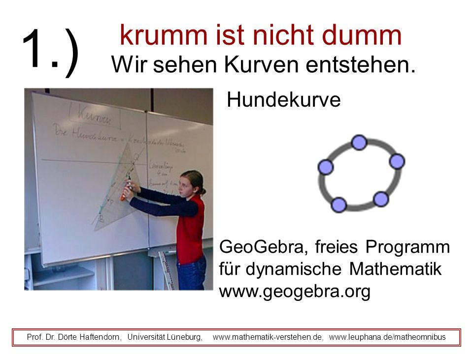 krumm ist nicht dumm Prof. Dr. Dörte Haftendorn, Universität Lüneburg, www.mathematik-verstehen.de, www.leuphana.de/matheomnibus 1.) Wir sehen Kurven